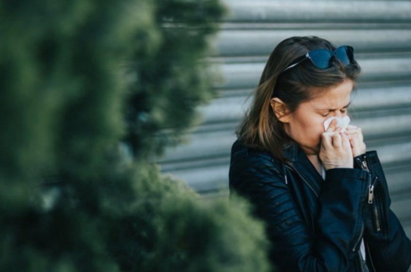 Alergia na pleśń